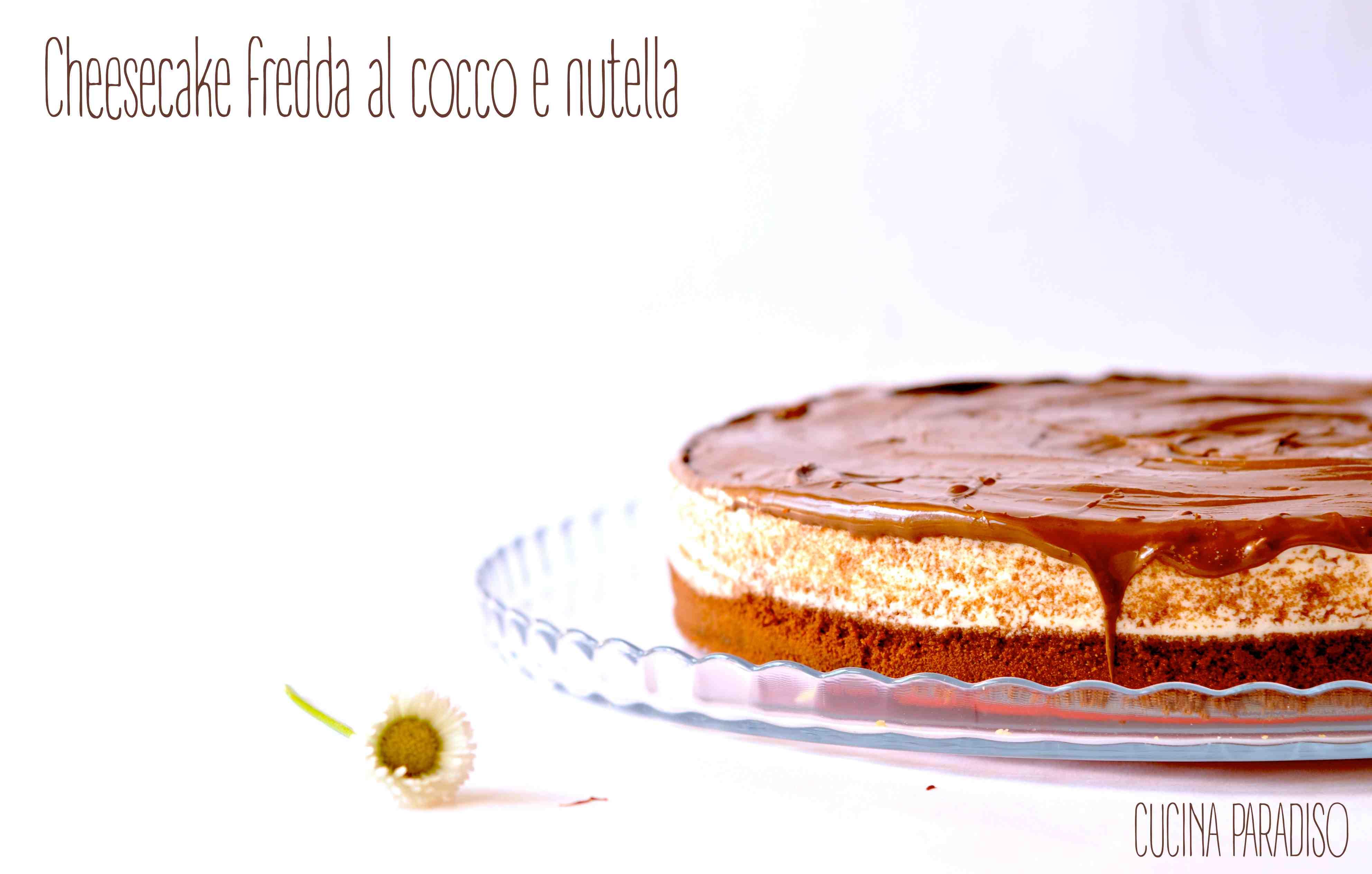 Cheesecake fredda al cocco e nutella2