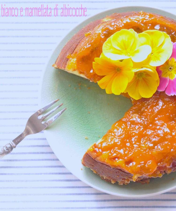 Cheesecake al cioccolato bianco e marmellata di albicocche