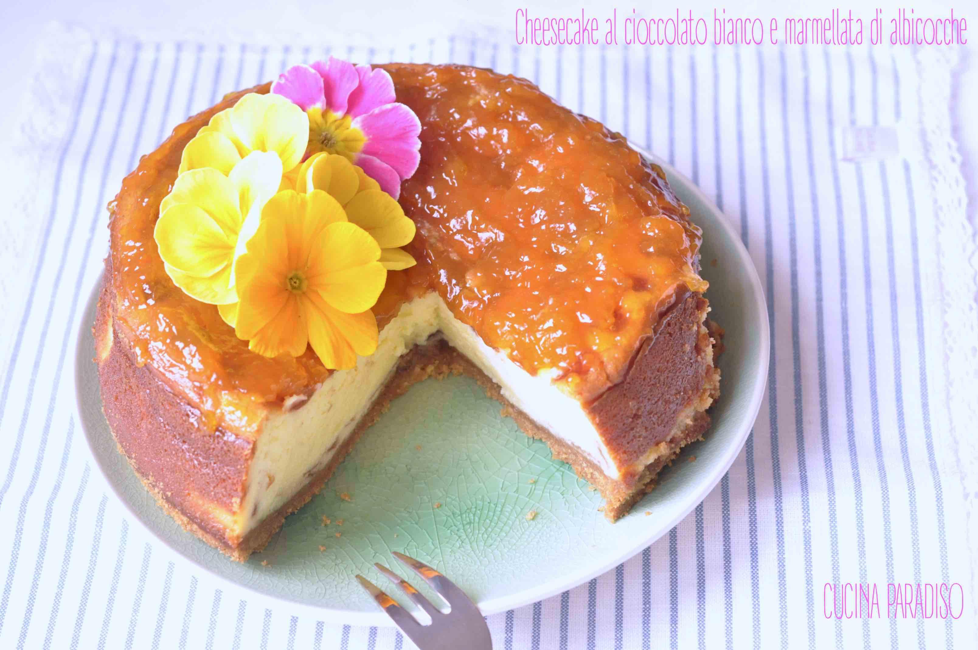 Cheesecake al cioccolato bianco e marmellata di albicocche2