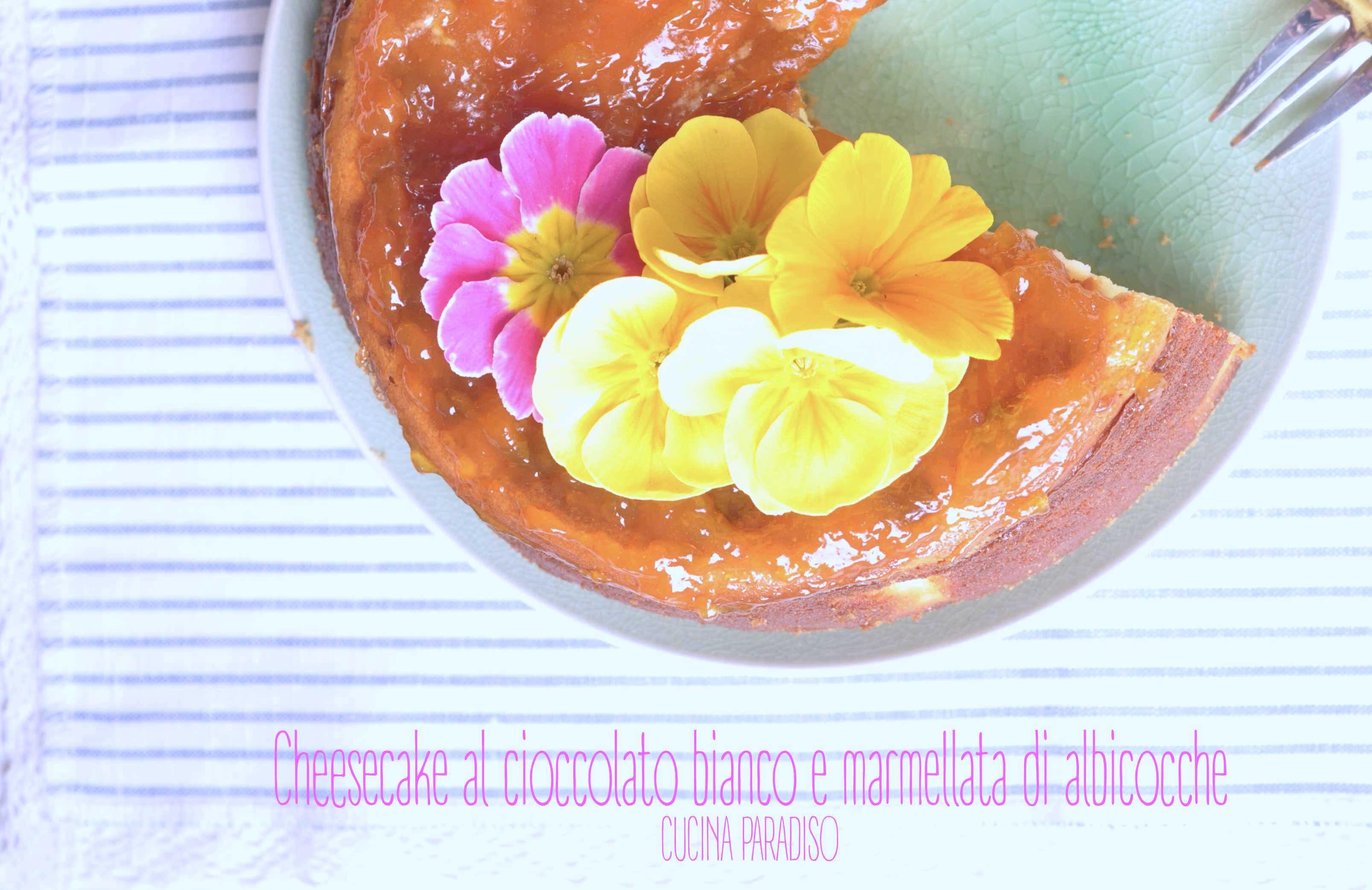 Cheesecake al cioccolato bianco e marmellata di albicoccheCheesecake al cioccolato bianco e marmellata di albicocche3