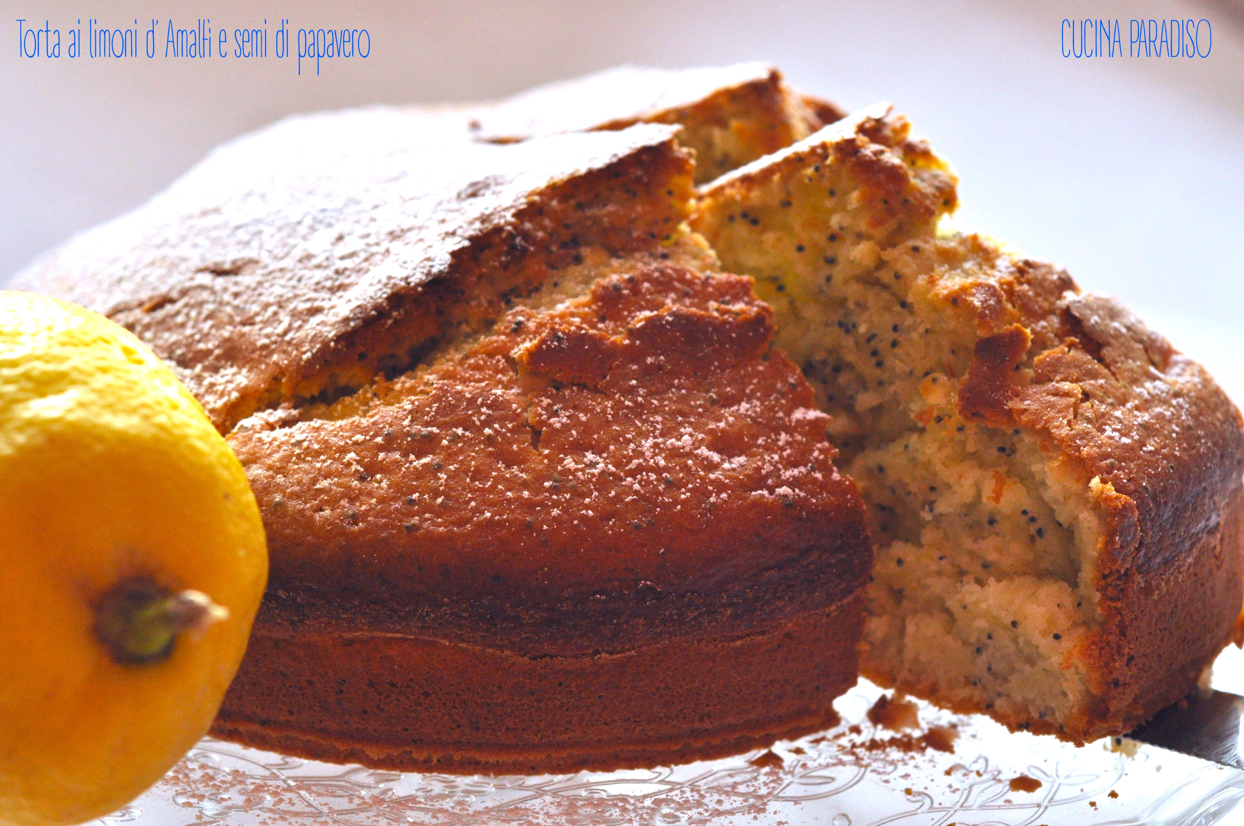 Torta ai limoni d' Amalfi e semi di papavero5