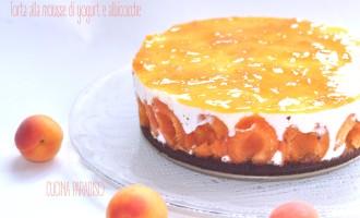 Torta alla mousse di yogurt e albicocche2