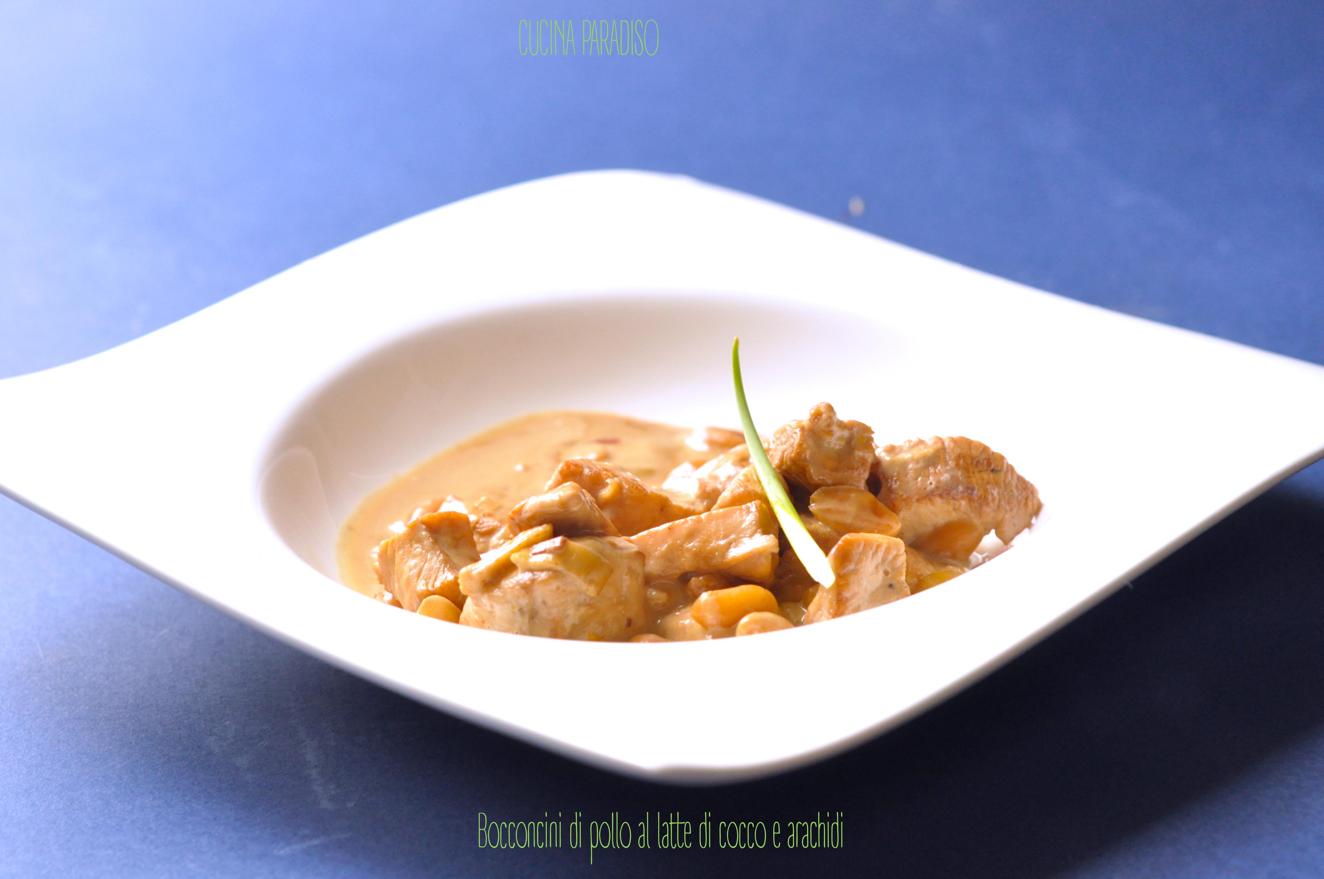 bocconcini-di-pollo-al-latte-di-cocco-e-arachidi3