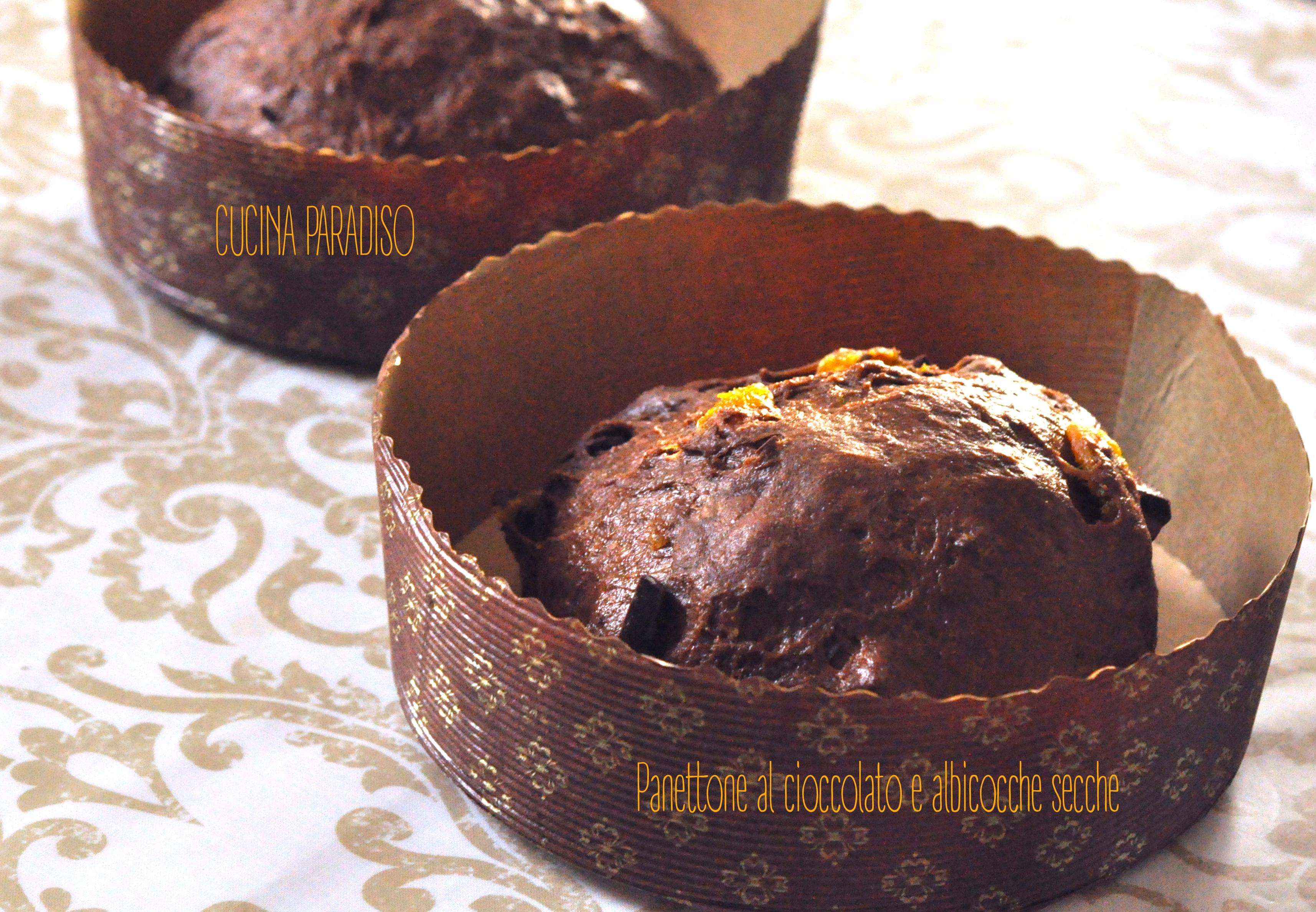 panettone-al-cioccolato-e-albicocche-secche