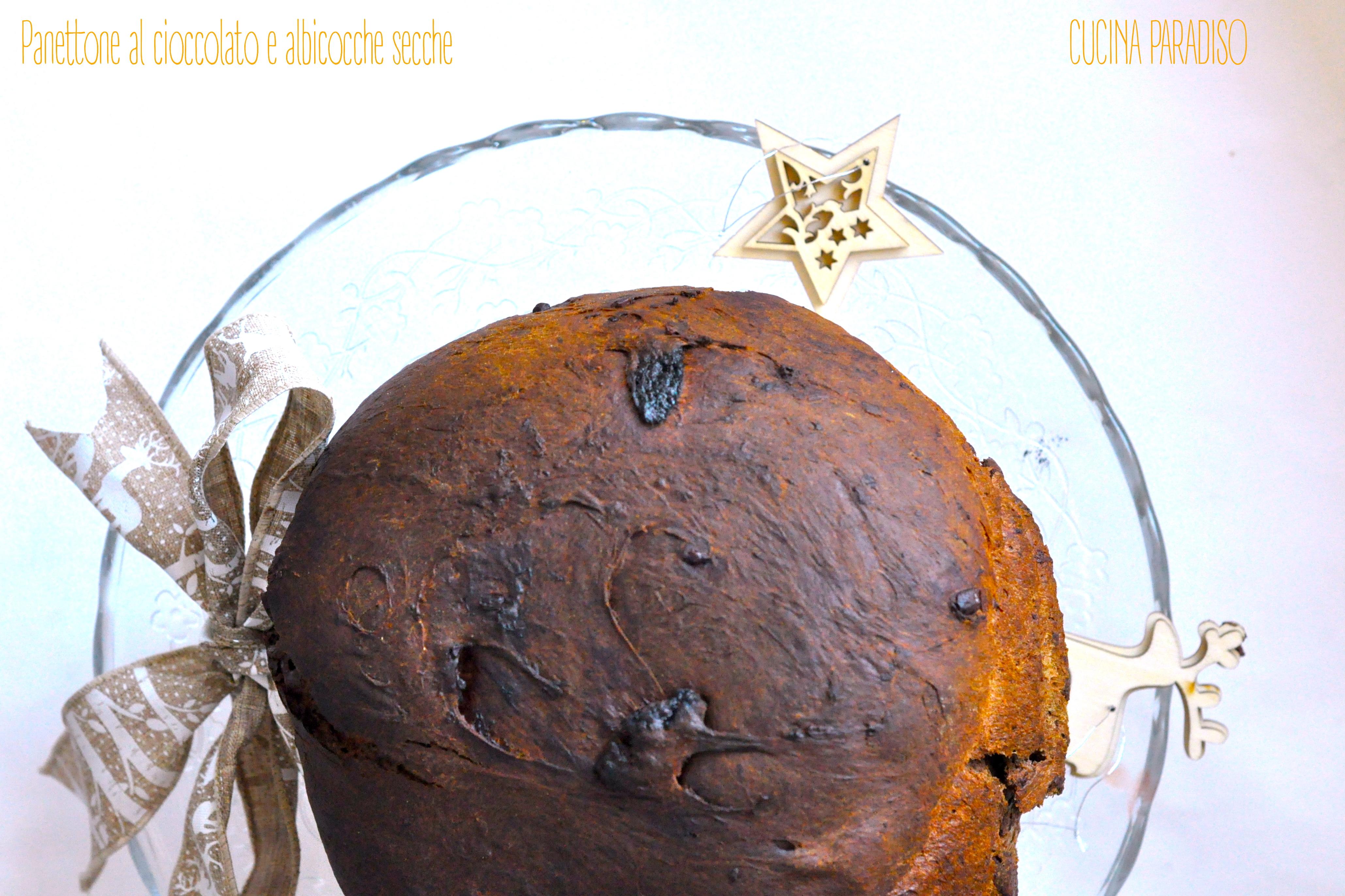 panettone-al-cioccolato-e-albicocche-secche3