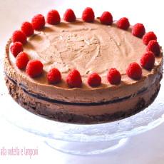 Cheesecake fredda alla nutella e lamponi2