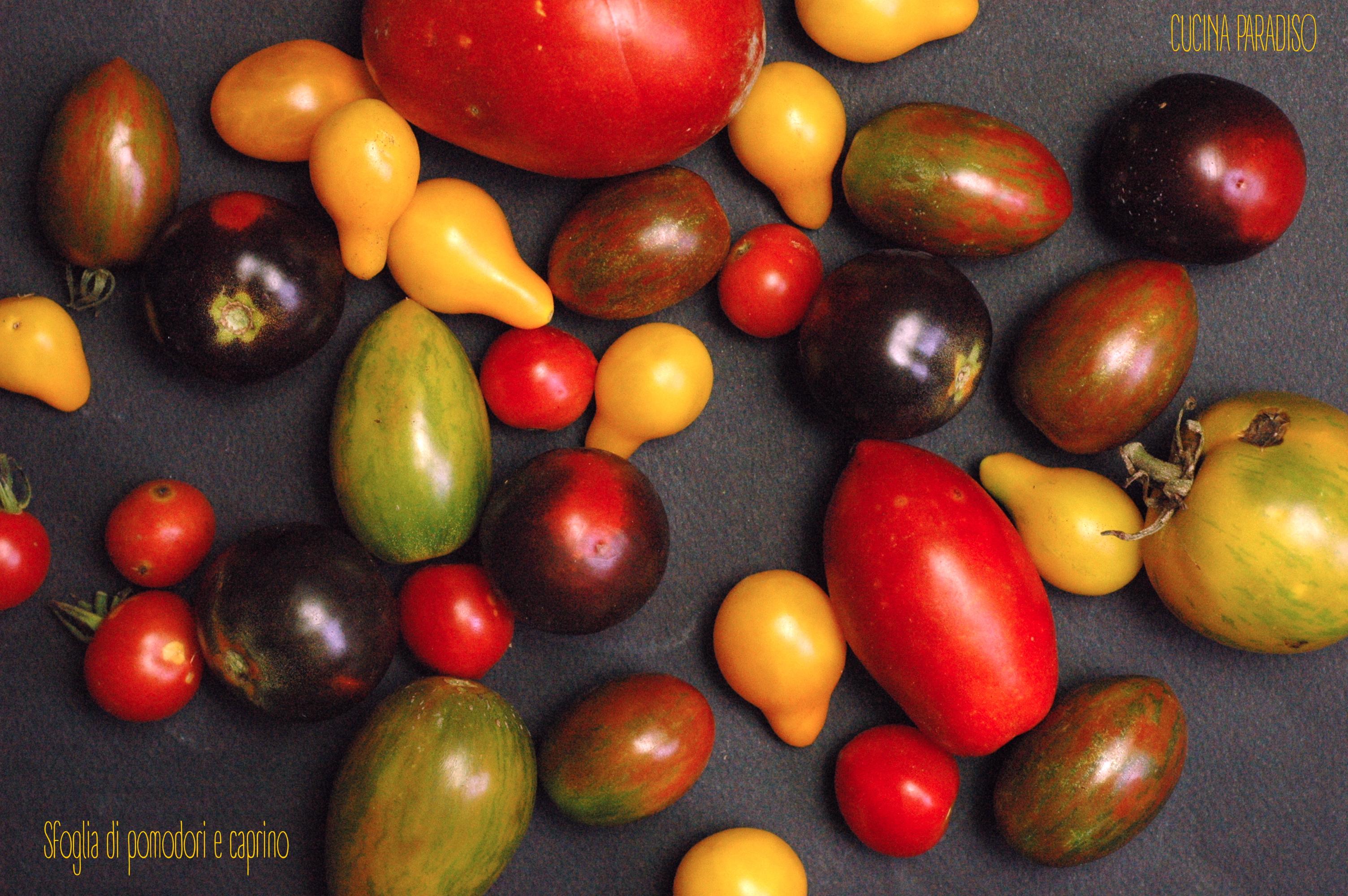 Sfoglia di pomodori e caprino2